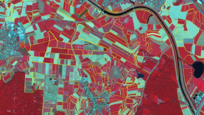 declared parcels on a satellite image SPOT6, summer 2018, False colour display